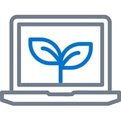 business growth through effective online marketing
