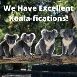 excellent qualifications